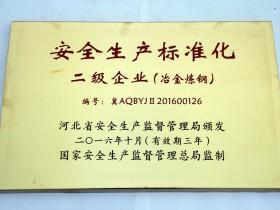 16年 安全生产标准化 二级企业(炼钢)
