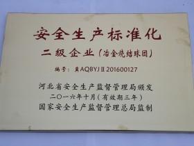 16年 安全生产标准化 二级企业(烧结)