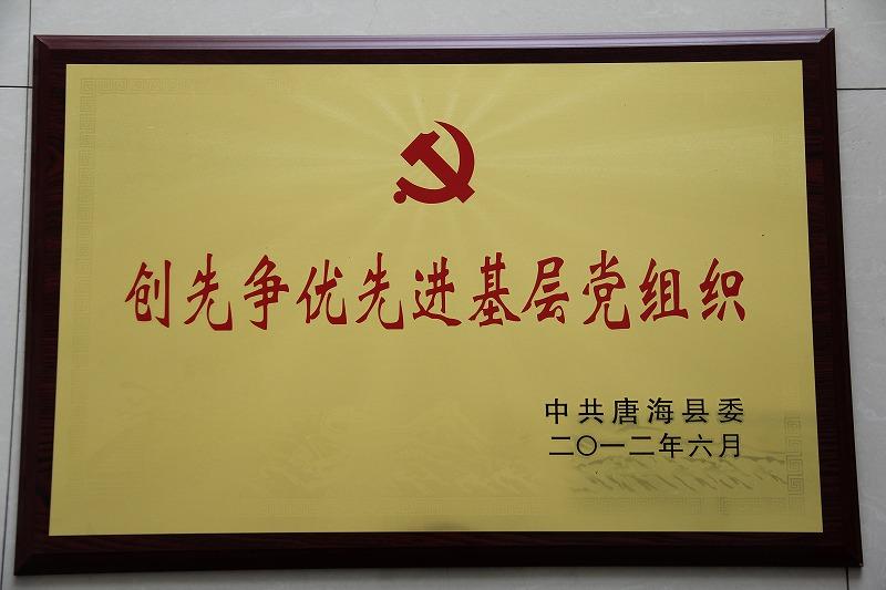 12年 创先争优先进基层党组织