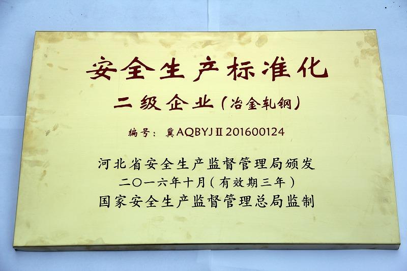 16年 安全生产标准化 二级企业(轧钢)
