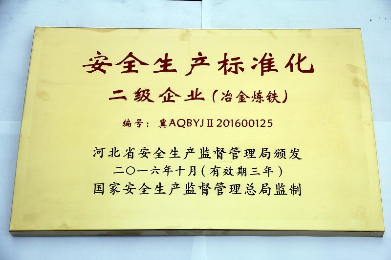 16年 安全生产标准化 二级企业(炼铁)